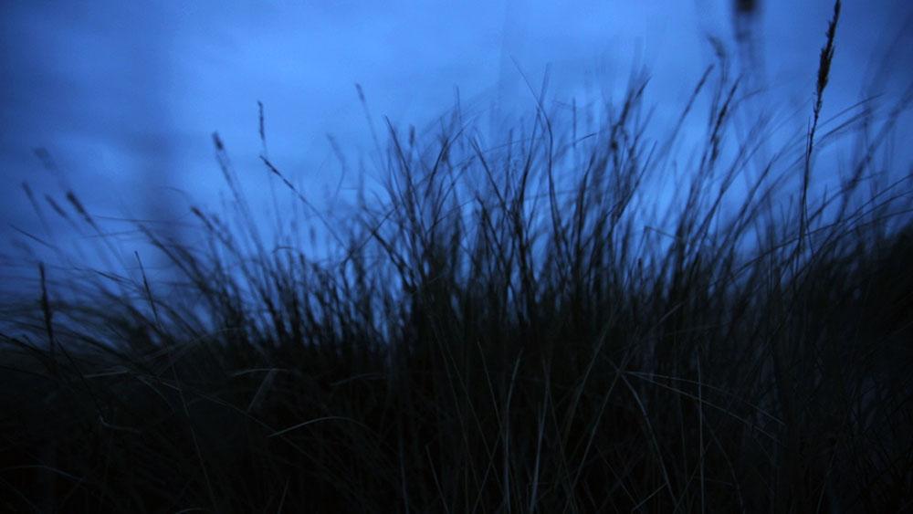 VALLEND-duingras-avond