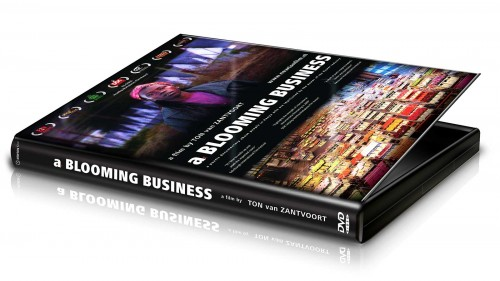 home-use-dvd-blooming-business
