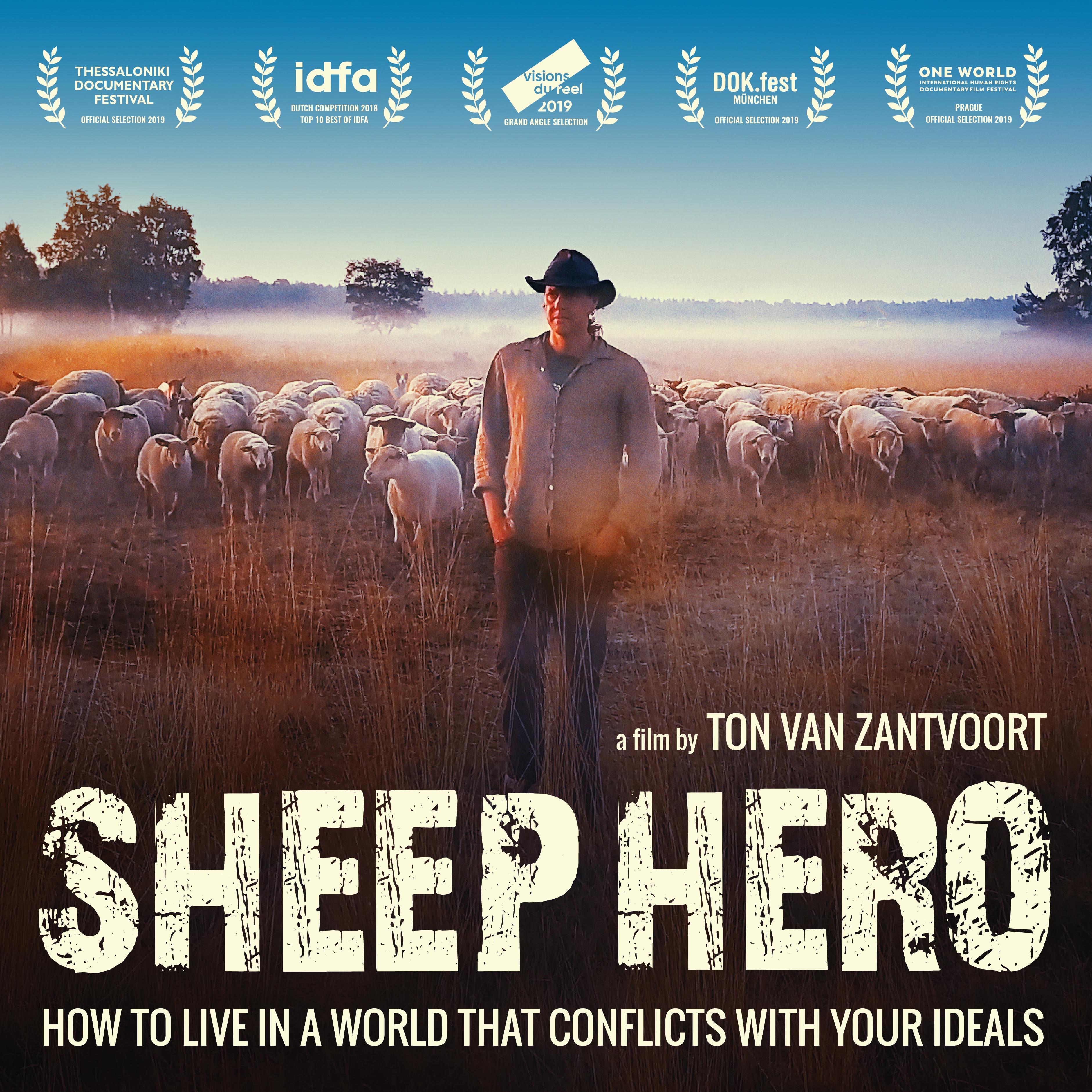 SHEEP HERO flyer minimal - square