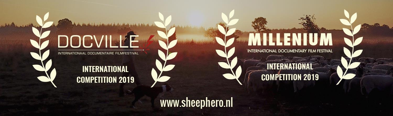 SHEEP HERO | documentary | 81 min | Ton van Zantvoort