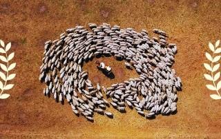 DOK.Fest-Munchen-SHEEPHERO
