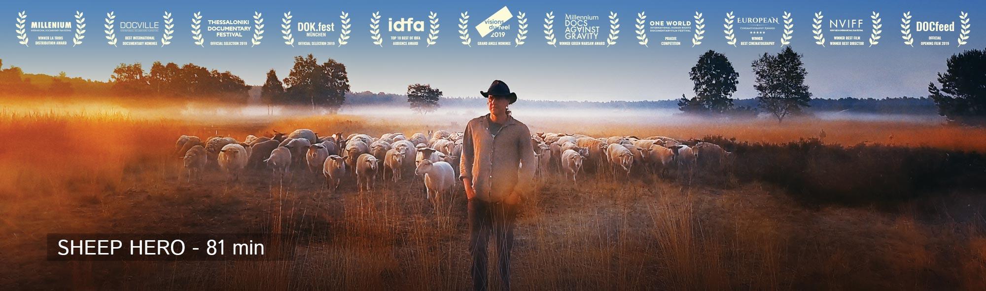 SHEEP-HERO-DOCUMENTARY