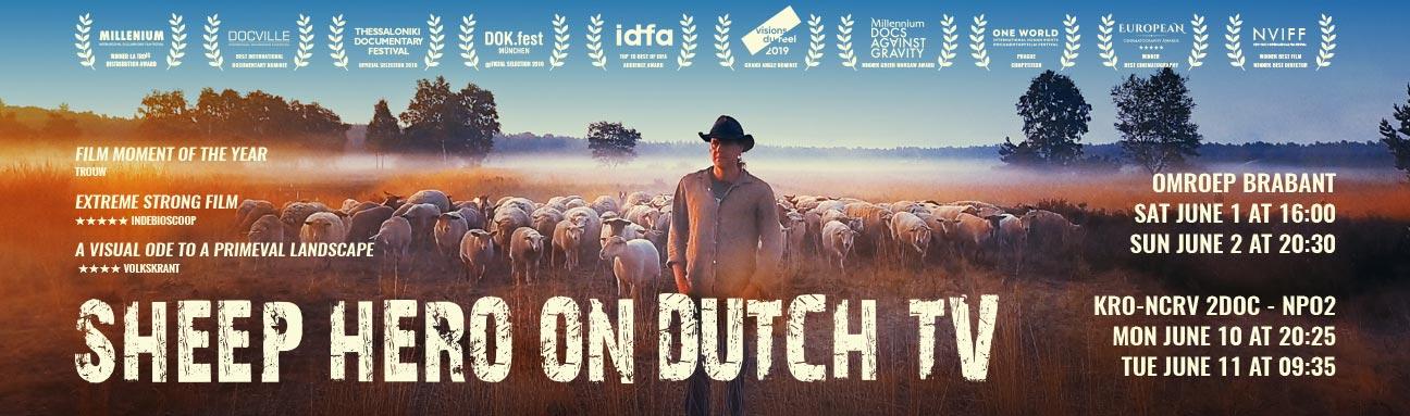SHEEP-HERO_on_Dutch__TV