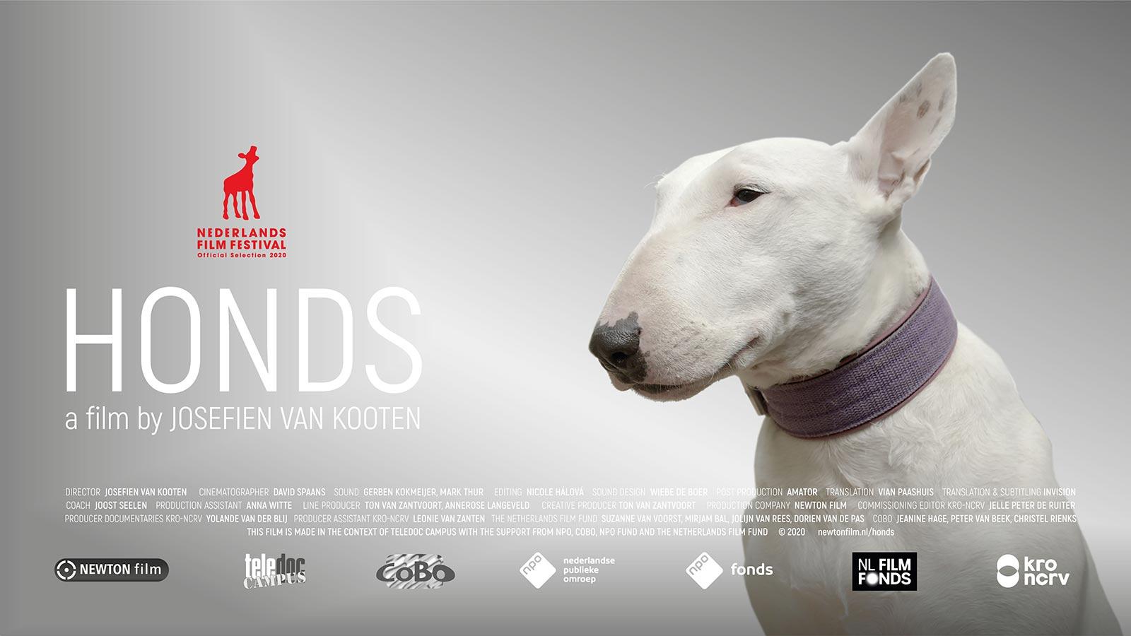 HONDS_a-NEWTONfilm-by-Josefien-van-Kooten