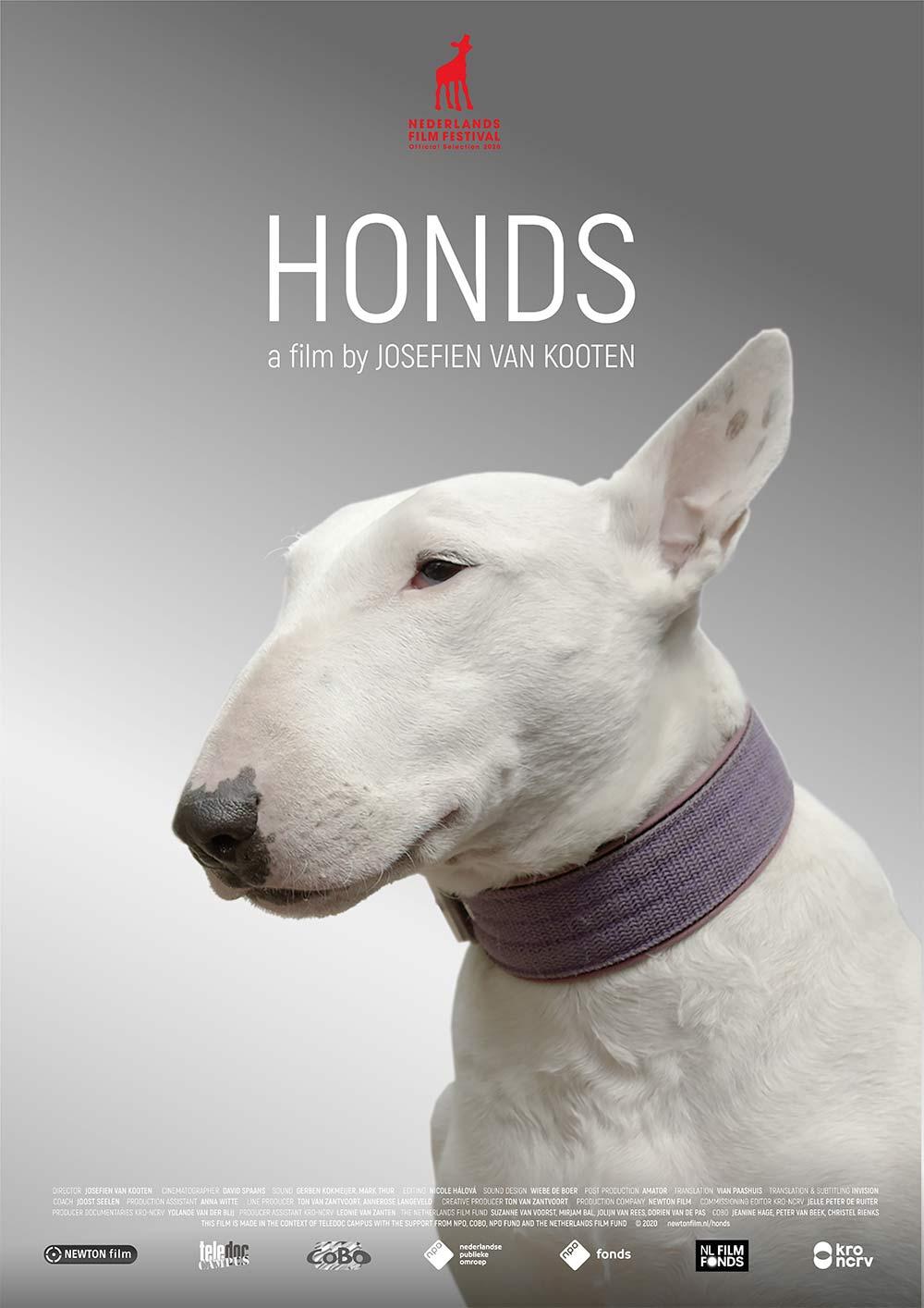 poster-HONDS_NEWTON-film-van-Josefien-van-Kooten