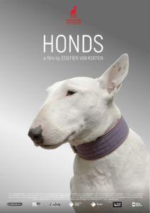 poster-HONDS_a-NEWTON-film-by-Josefien-van-Kooten
