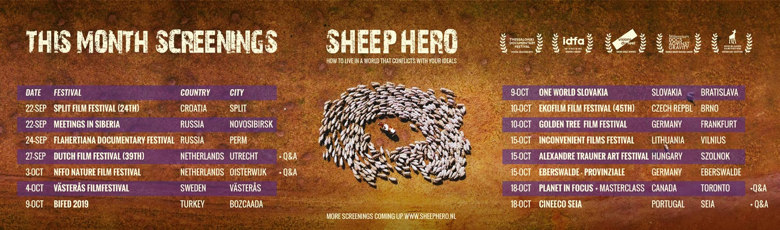 SHEEP_HERO_This-month-Screenings