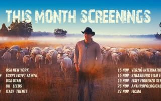 November-screenings