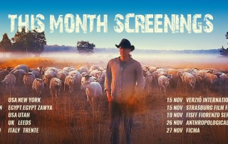 November-screenings