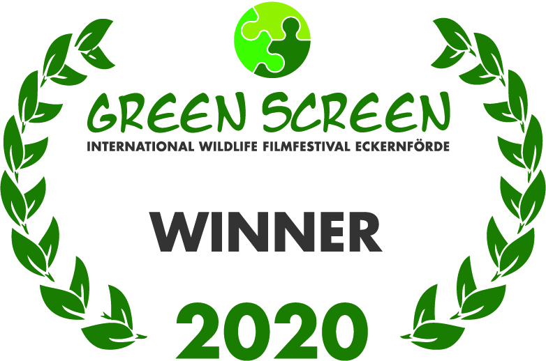 GREEN SCREEN_winner_green_2020